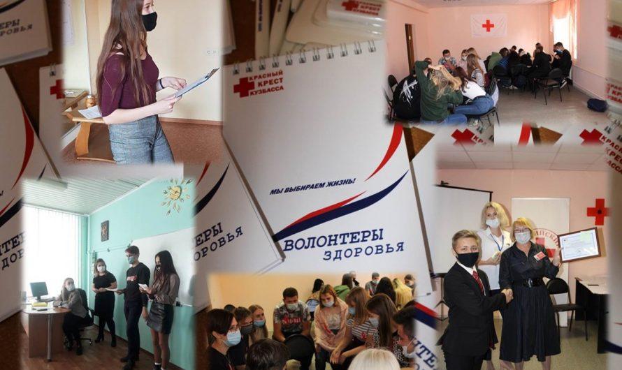 Итоги реализации проекта «Волонтеры здоровья»